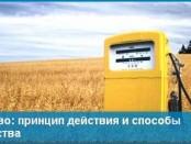 Биотопливо: принцип действия и способ производства своими руками
