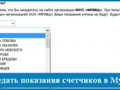 Как передать показания счетчиков в Мурманске: за воду газ и электроэнергию