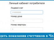 как передать показания счетчиков в Челябинске