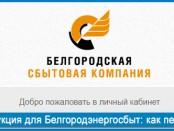 Инструкция для Белгородэнергосбыт: как передать показания счётчика
